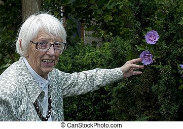 grandma looking at flowers - grandma in the garden showing...