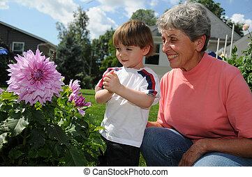 Grandma\'s dahlia - A champion dahlia grower shows off one...