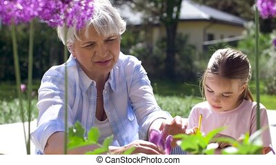 grandmother and girl study flowers at garden - gardening,...