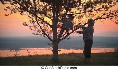 Grandmother helps her grandson to climb a tree against the summer sunset
