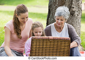 Grandmother mother and daughter with picnic basket at park