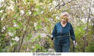 Grandmother watering an Apple tree from a hose, summer day in the garden