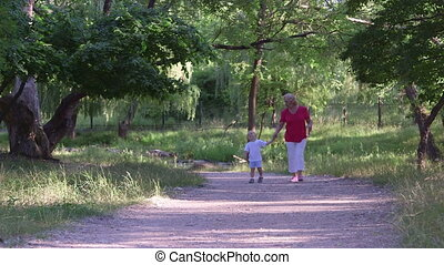 Grandmother with grandson walking along the alley in summer park