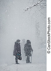 Grandmothers walk in the park during a snowfall
