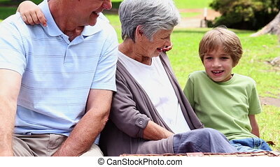 Grandparents having a picnic with grandchildren -...