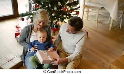 Grandparents with grandson at Christmas tree at home.