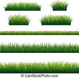 grands conges, ensemble, herbe verte