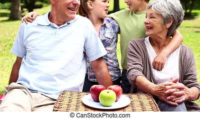 grands-parents, avoir pique-nique, à, petits-enfants