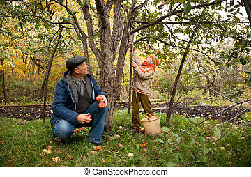 Grandson and grandfather neat the apple tree in autumnal...
