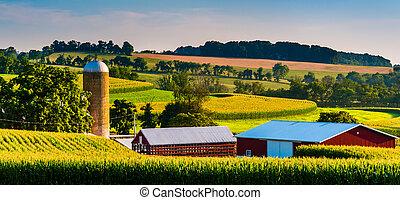 granero, rural, pennsylvania., granja, york, condado, silo