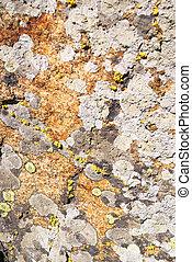 granit, moosig