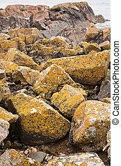 granite boulder on Pink Granite Coast in France