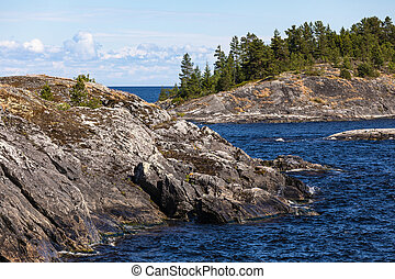 Granite rocky coast and pine tree forest.
