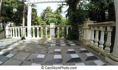 Granite staircase with cat - RUSSIA, GURZUF, OCTOBER: Camera...