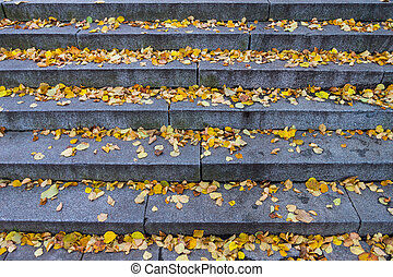 Granite stone stairs with leafs