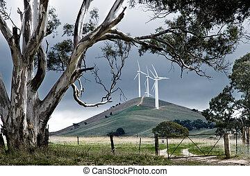 granja, australiano, viento