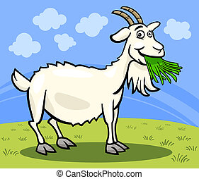 granja, caricatura, goat, ilustración, animal