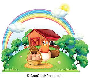 granja, cesta, gallina, huevo
