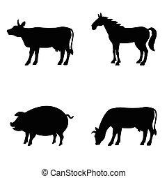 granja, Conjunto,  vector, animales