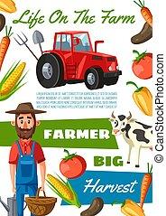 granja, ganado, agricultura, agronomist, granjero