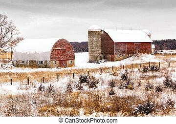 granja, invierno