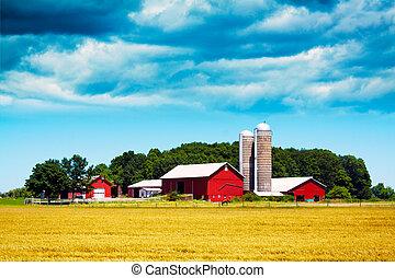 granja, norteamericano