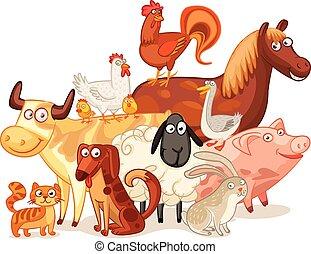 granja, posar, animales, juntos