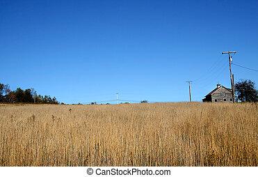 granja, tierras