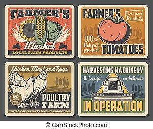 granja, vegetales, tractor, pollo, campo, gallo