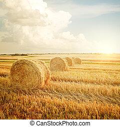 granja, verano, almiar, paisaje