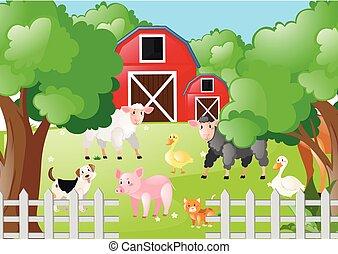 granja, vida, animales, corral