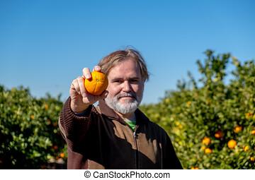 granjero, exposiciones, un, naranja, en, el suyo, campo