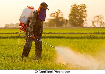 granjero, rociar, pesticida