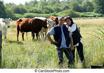 granjero, y, esposa, se paró, en, campo, de, vacas