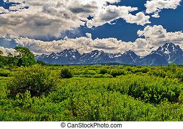 grannn tetons, mountains, landskap