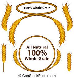 grano, conjunto, trigo, entero
