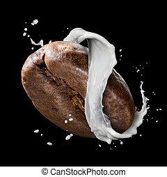 grano de café, con, leche, salpicadura, aislado, en, negro