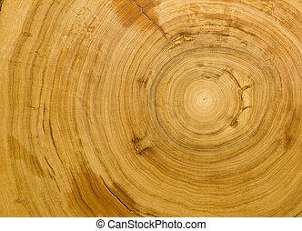 grano legno, fondo, struttura