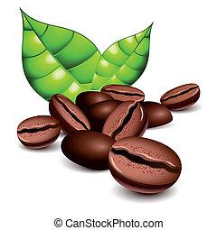 granos de café, y, hojas