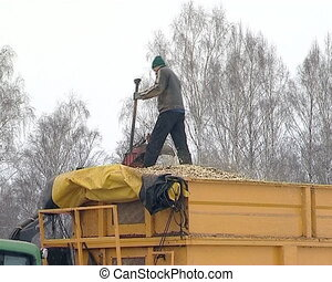 granulate branch wood man - tractor with crane load branches...