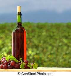Grape and red wine bottle