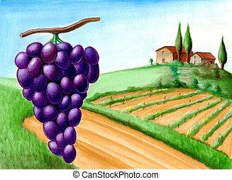 Grape and vineyard. Wine label illustration.