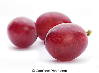 Grape berry closeup