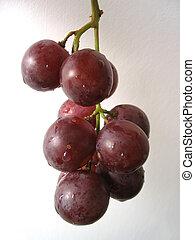 grape bunch #2
