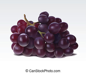 Bunch of grape isolated