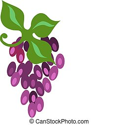 Grape cluster isolated on white - vector illustration