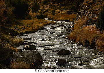 Grape Creek 3 - Grape Creek, in Fremont County, Colorado....