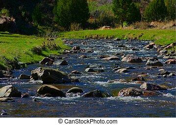 Grape Creek 4490