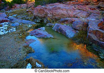 Grape Creek Ravine - The ice-encrusted water of Grape Creek...