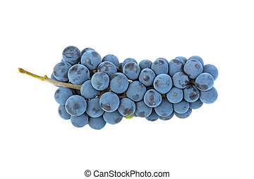 grape grape isolated on white background
